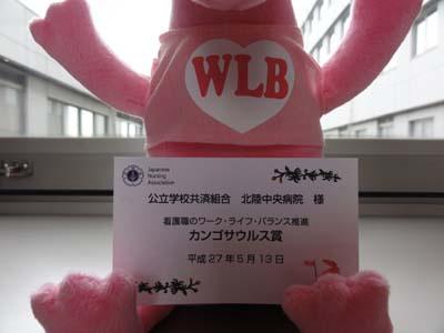 カンゴサウルス(WLB)
